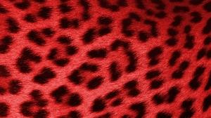 Leopard Red - HD Wallpaper 1080p