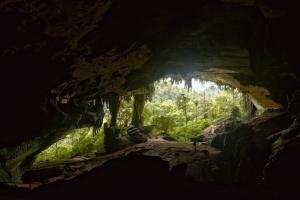 Niah National Park - Niah Great Cave