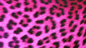 Leopard Hot Pink - HD Wallpaper 1080p