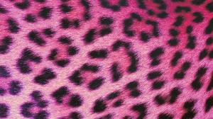 Leopard Pink - HD Wallpaper 1080p