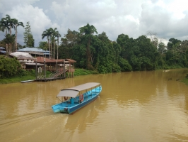 Sungai Niah - River