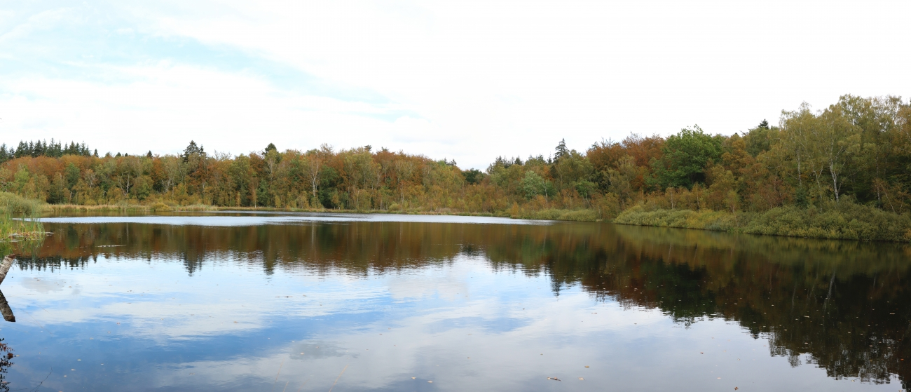 Bøllemosen Panorama