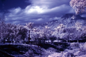 Playa de las americas IR photo