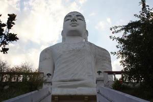 Giant White Buddha